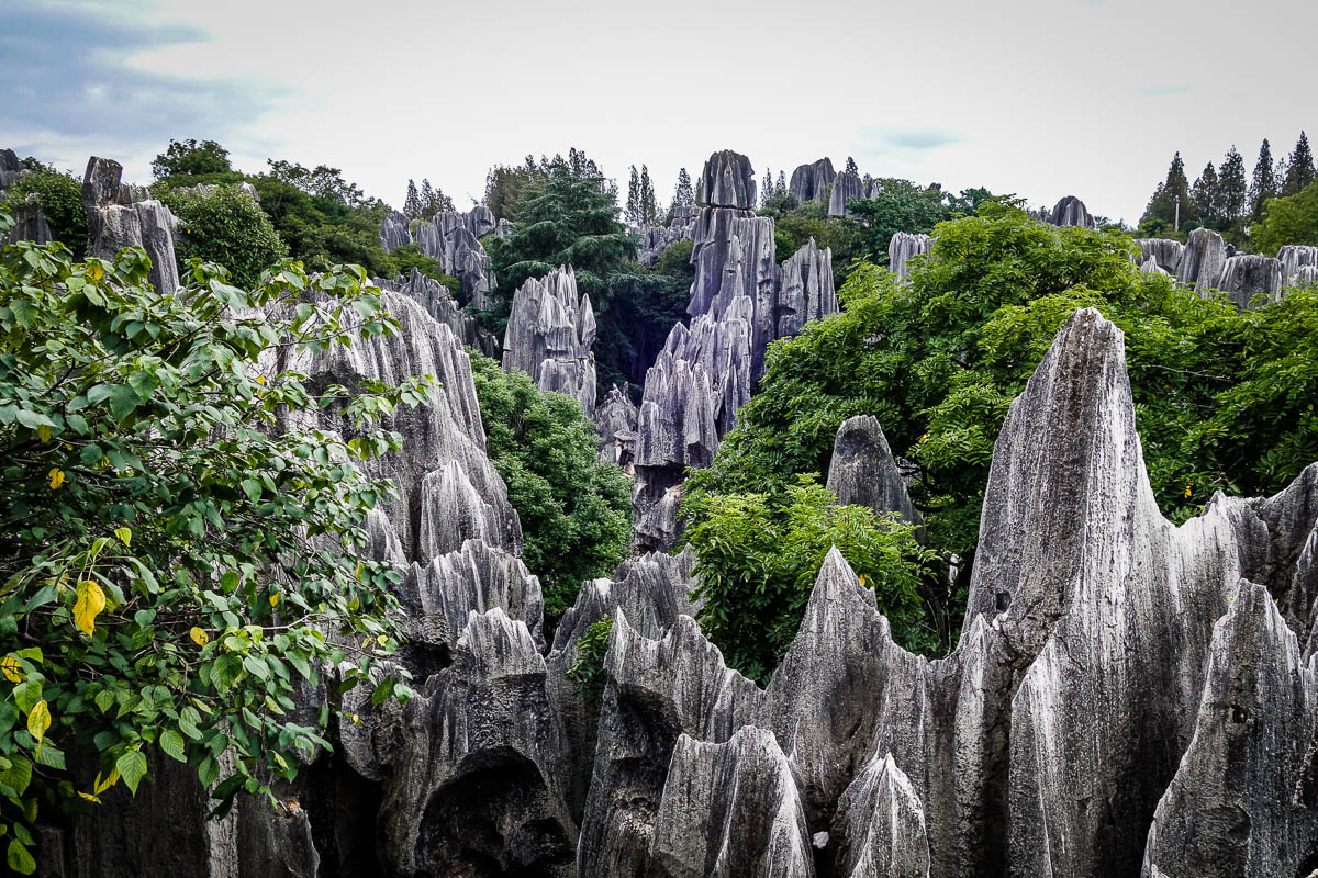 china-shilin-stone-forest-8