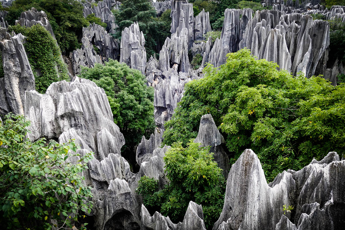 china-shilin-stone-forest-9