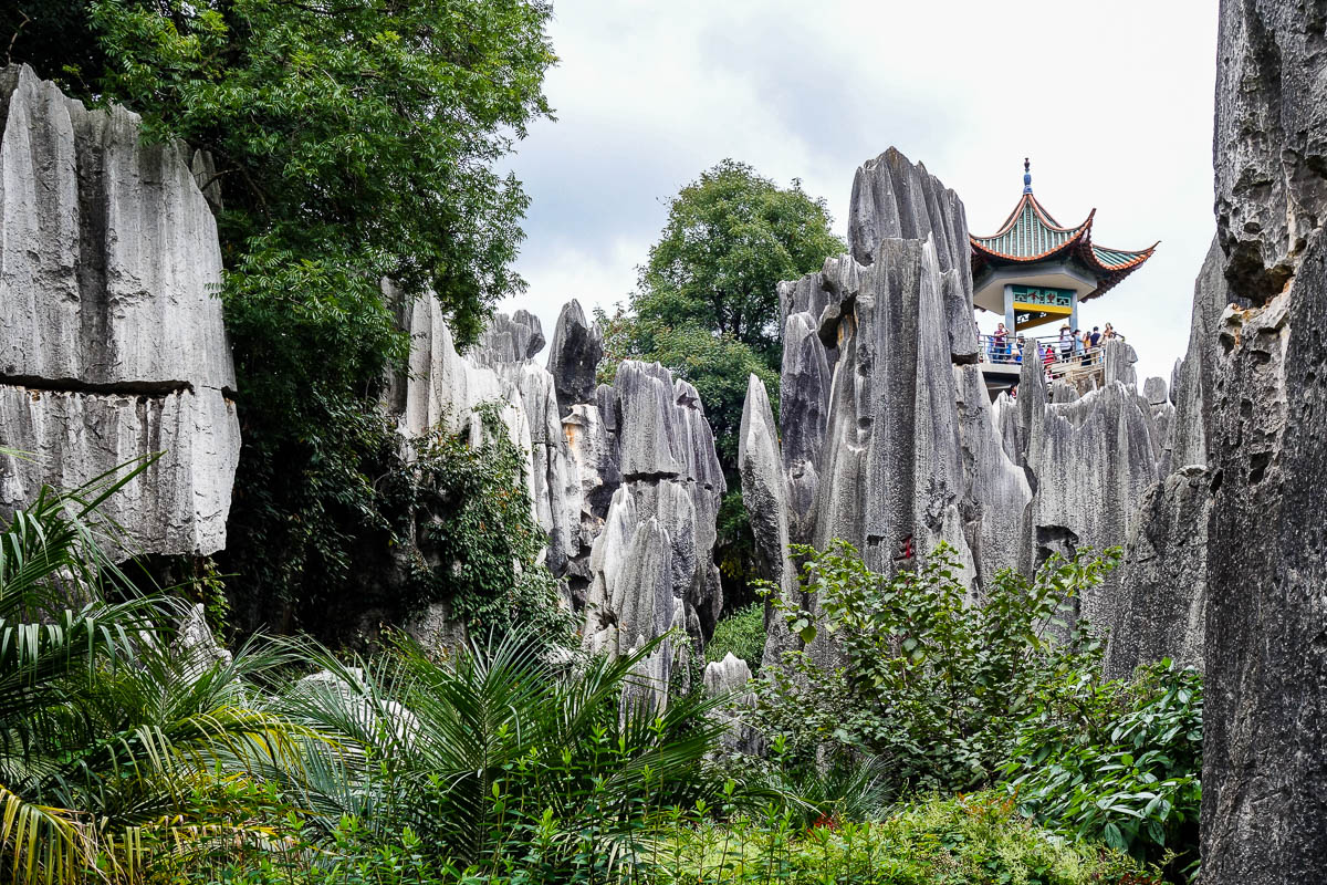 china-shilin-stone-forest-14