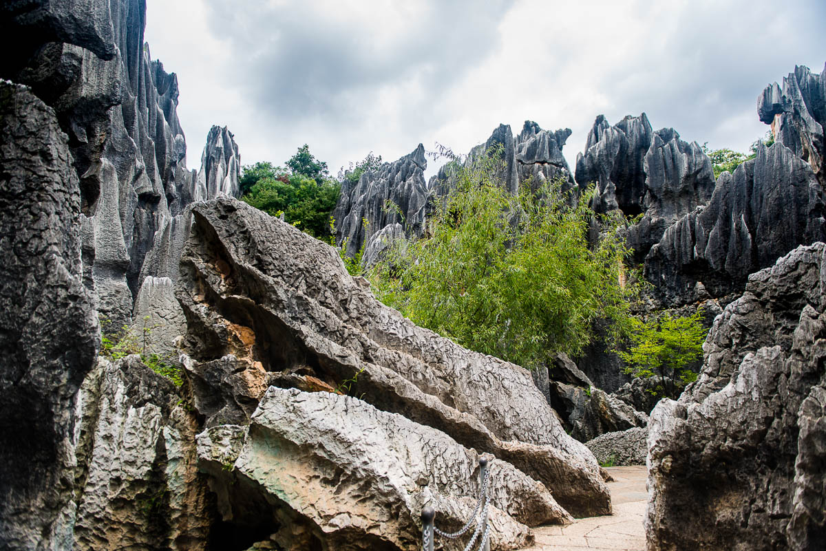 china-shilin-stone-forest-16