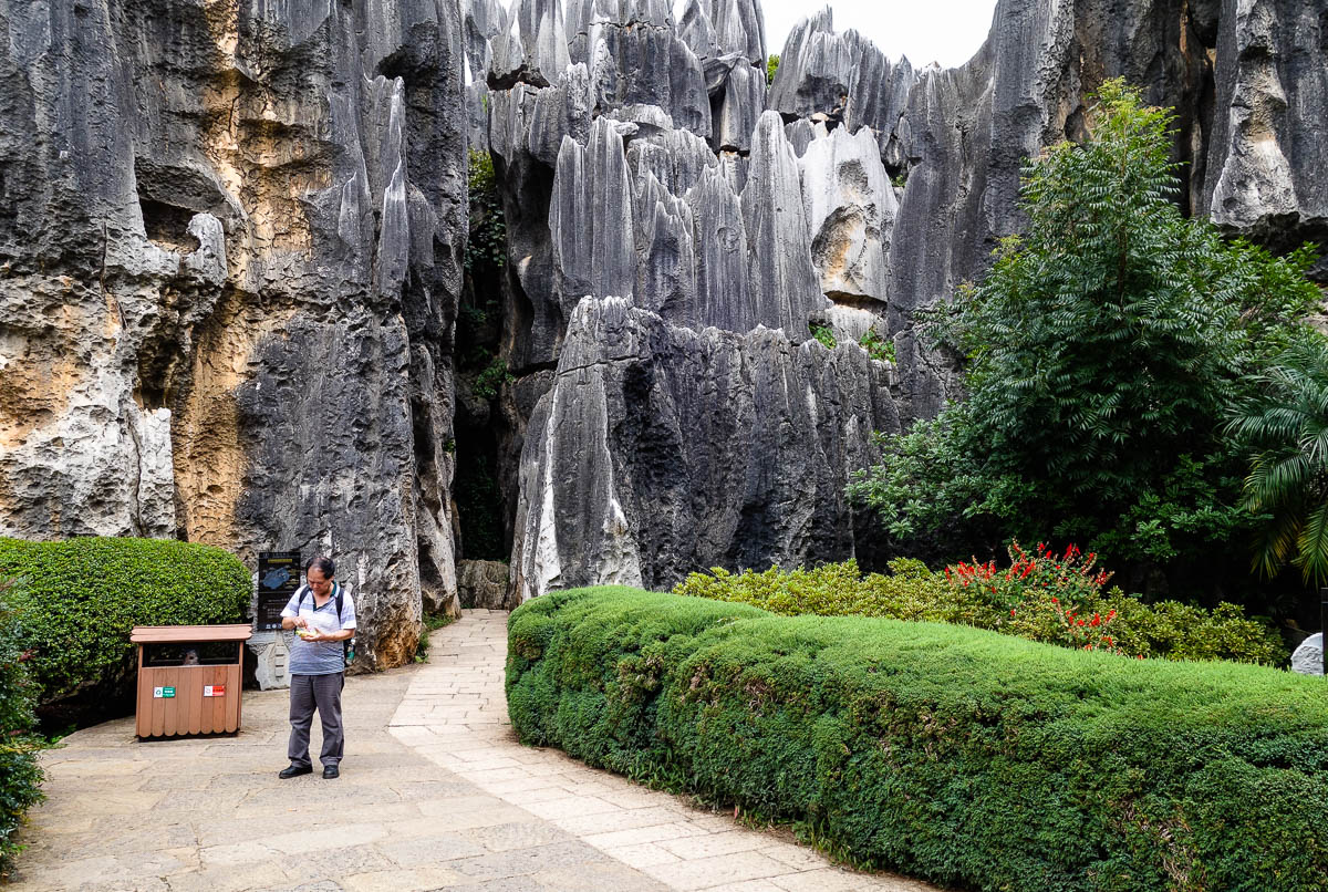 china-shilin-stone-forest-17