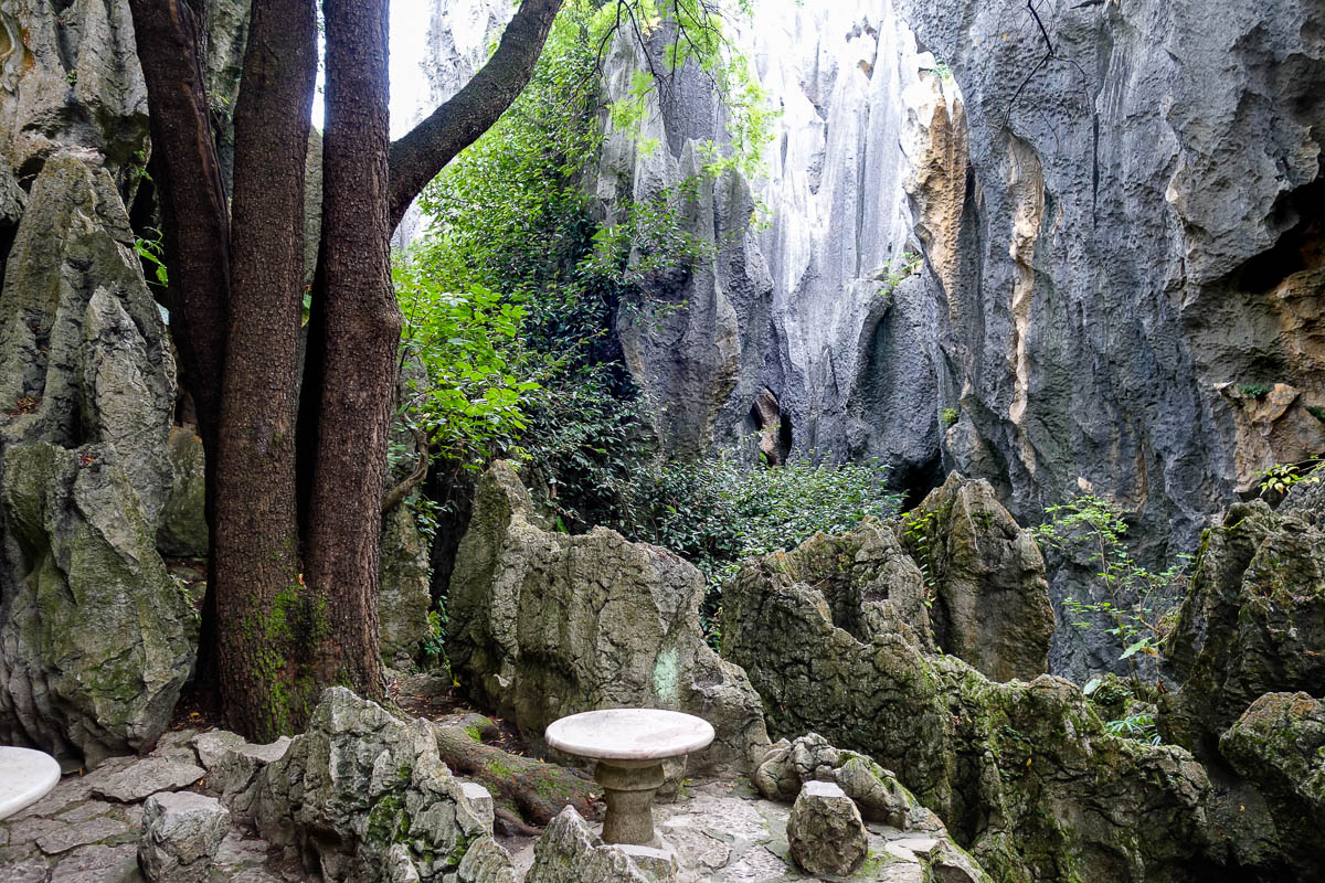 china-shilin-stone-forest-36