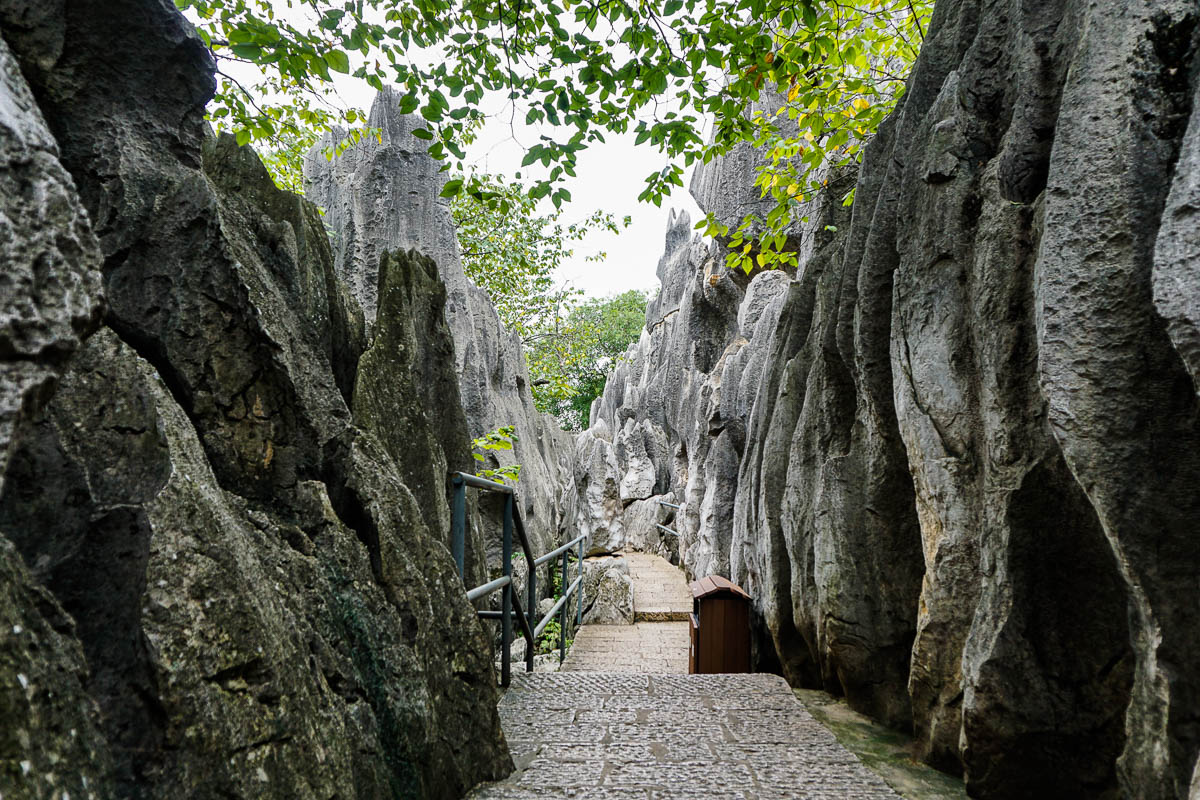 china-shilin-stone-forest-40