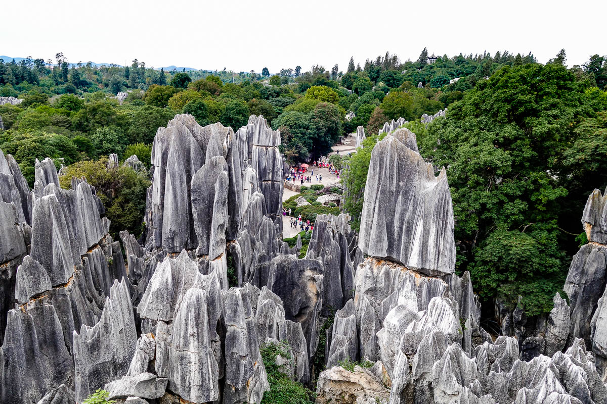 china-shilin-stone-forest-45