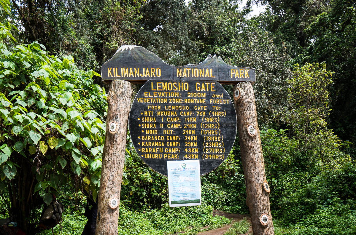 kilimanjaro-up-7