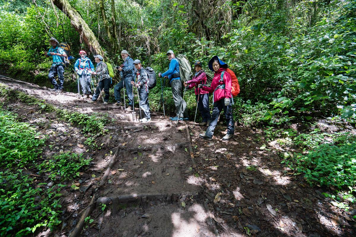 kilimanjaro-up-9