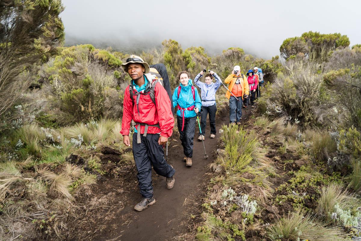kilimanjaro-up-11