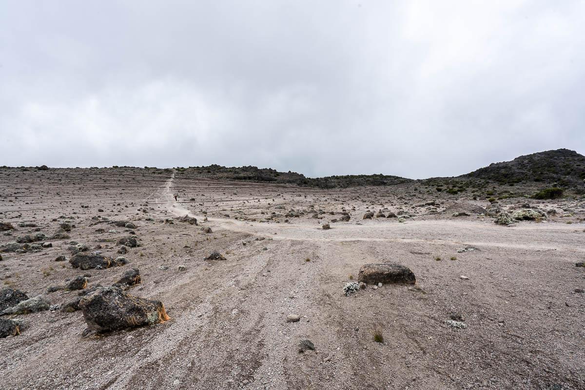 kilimanjaro-up-13