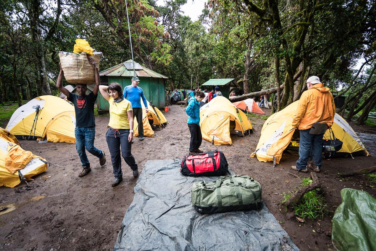 kilimanjaro-gogogo-6