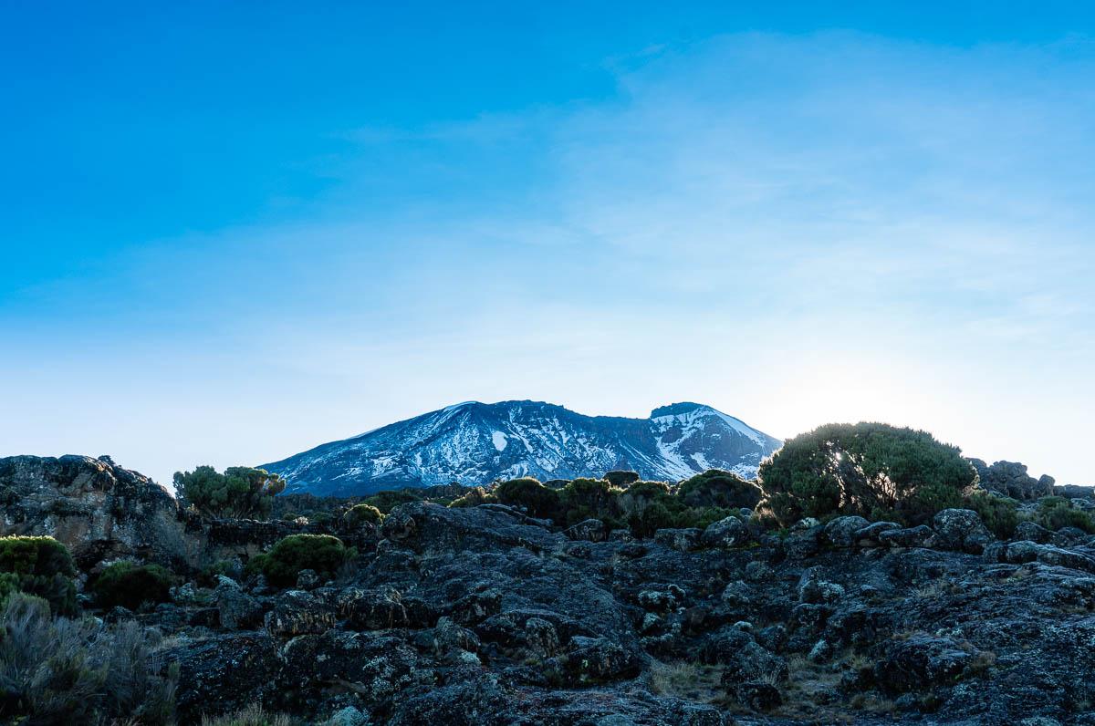 kilimanjaro-gogogo-20