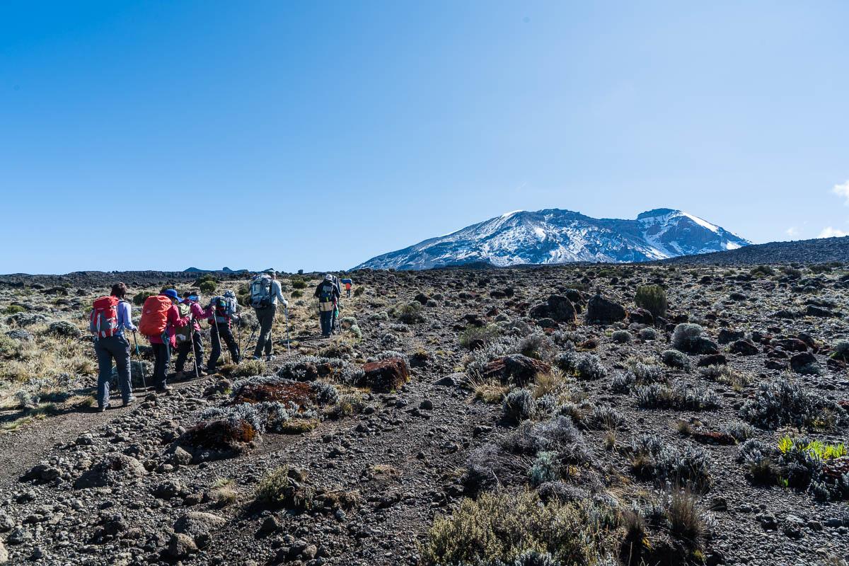 kilimanjaro-gogogo-21