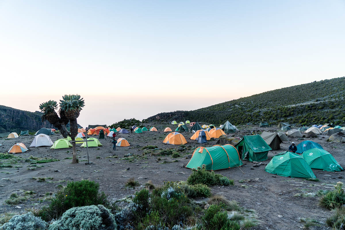 kilimanjaro-gogogo-30