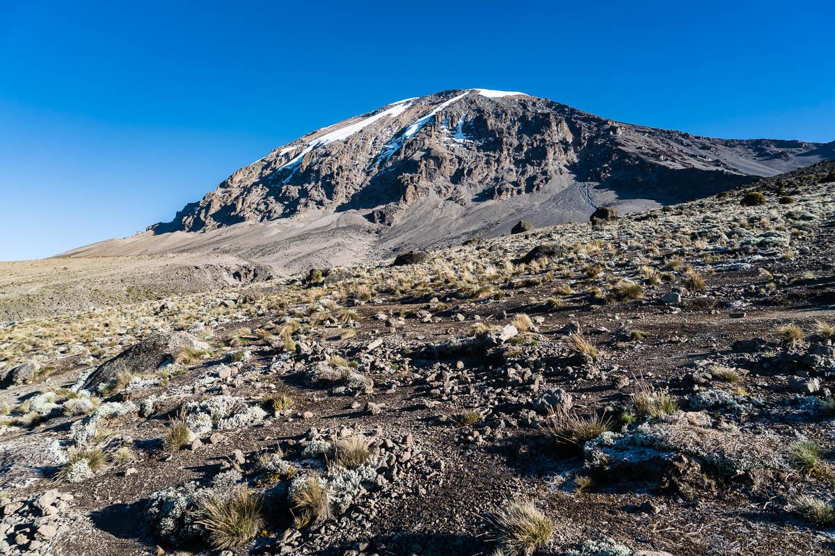 kilimanjaro-gogogo-38