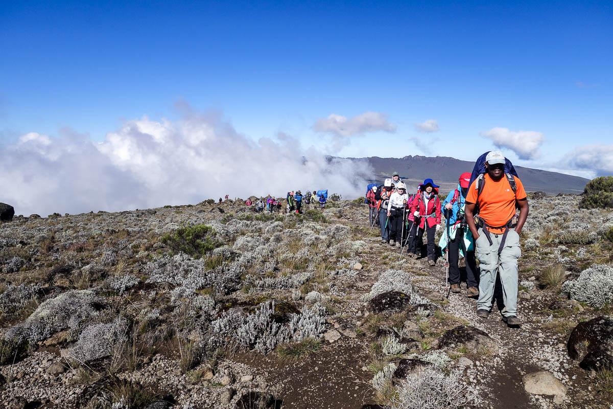 kilimanjaro-gogogo-53
