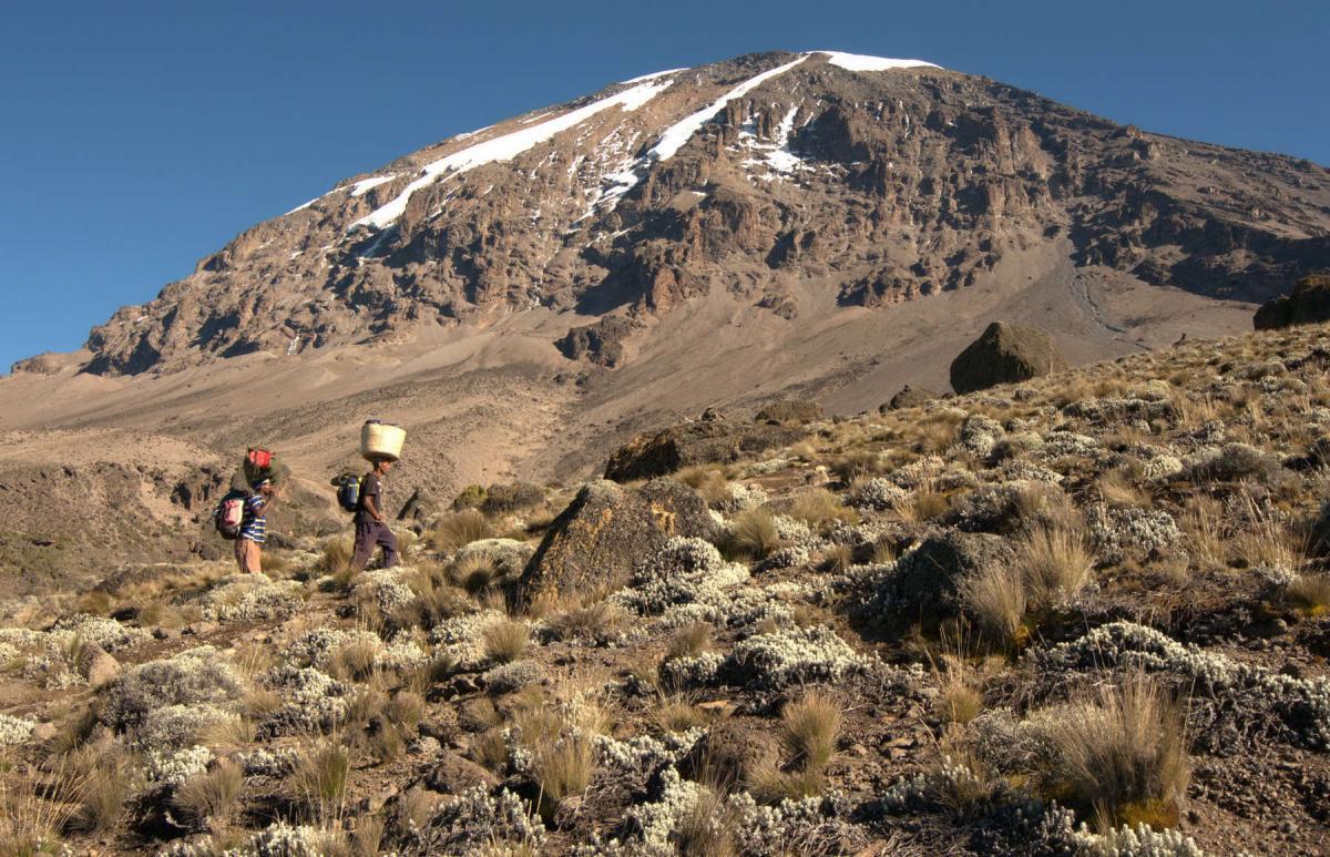 kilimanjaro-tourists-13