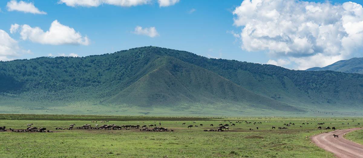 tanzania-safari-26