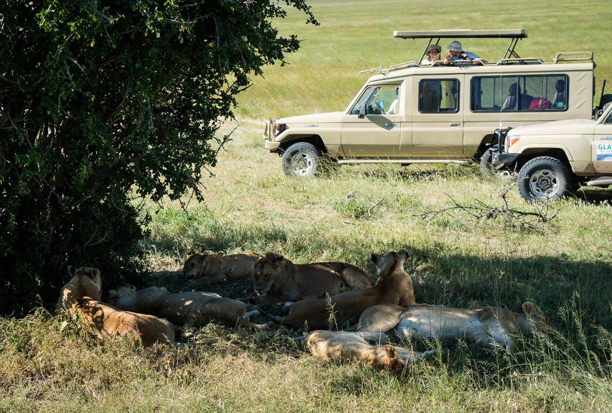 tanzania-safari-55