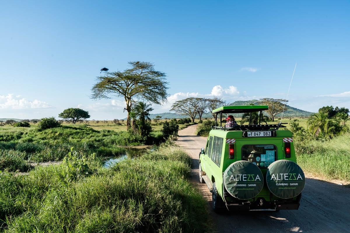 tanzania-safari-48