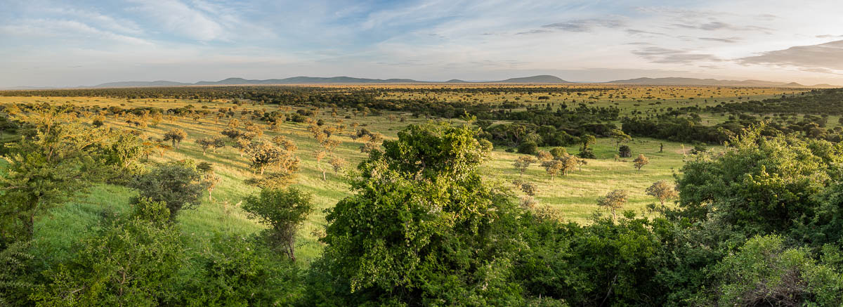 tanzania-safari-68