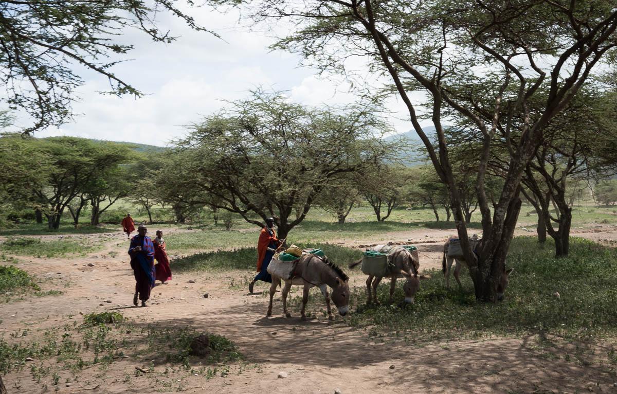 tanzania-masai-village-18