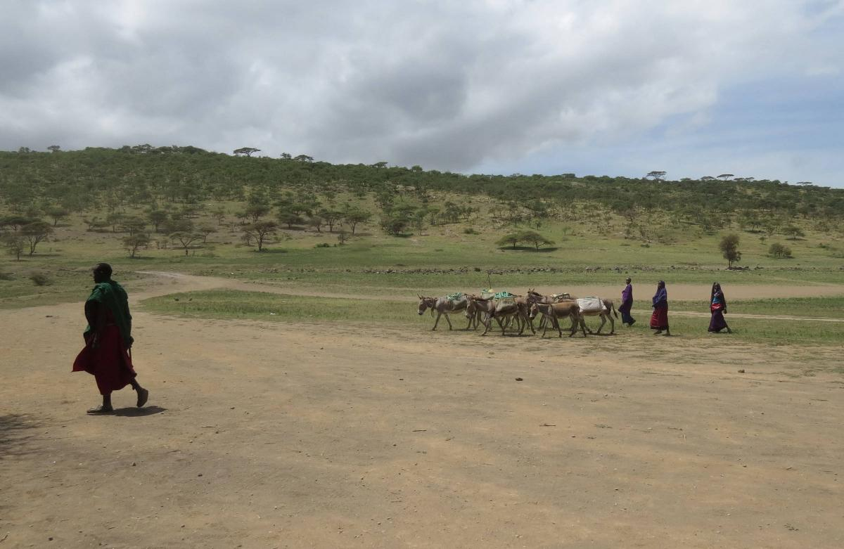 tanzania-masai-village-19