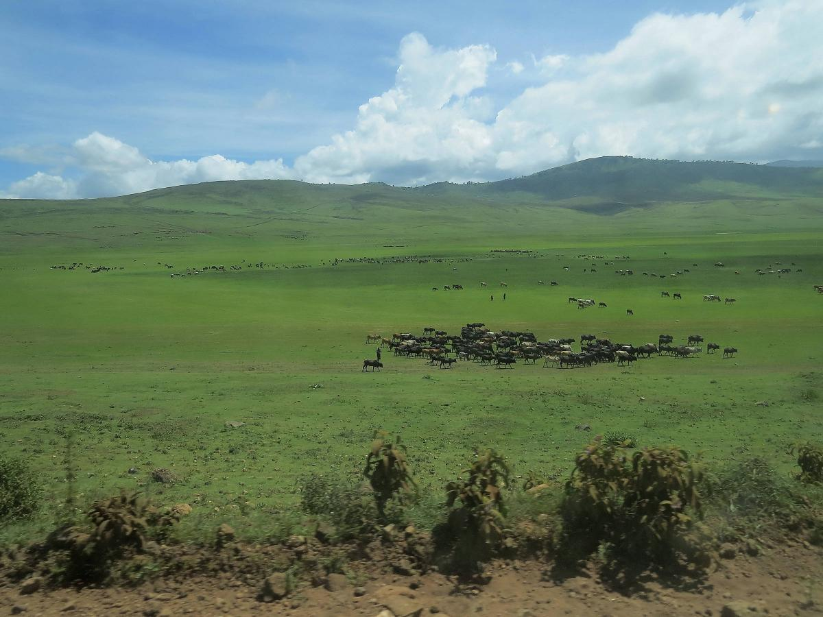 tanzania-masai-village-25