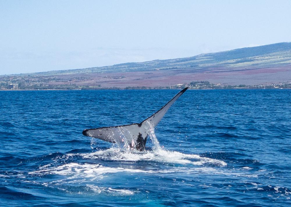 Hawaii, Maui
