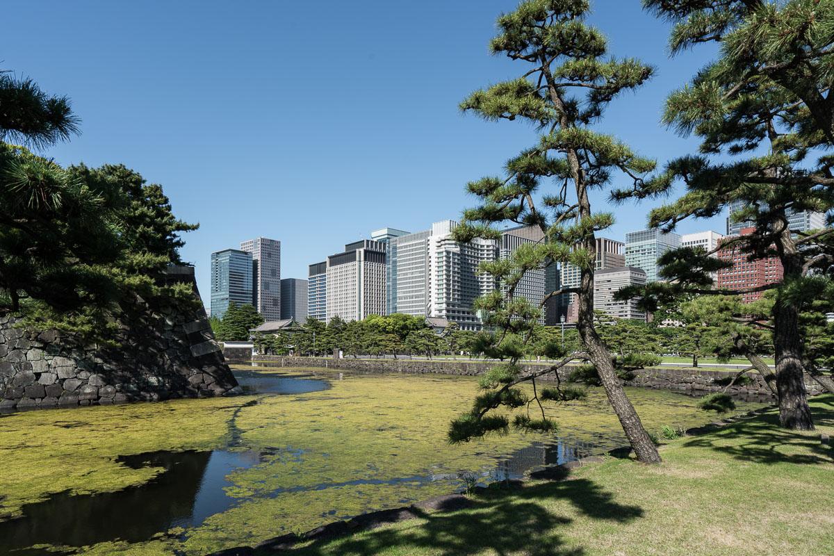 tokyo-japan-emperor-palace-may-2016-3