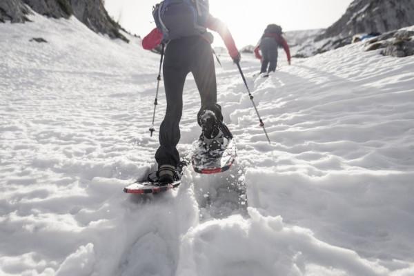 snowshoespam-2-1