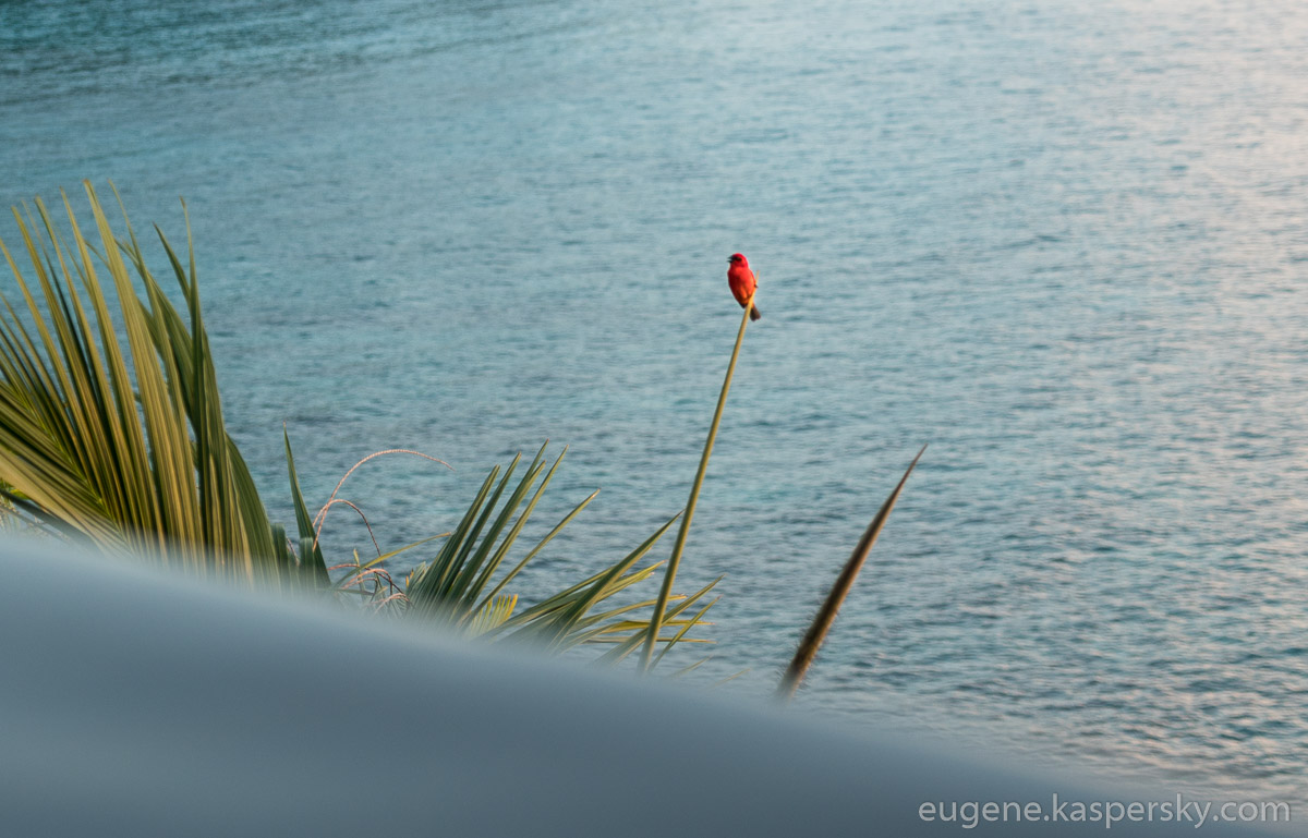 seychelles-happy-end-25
