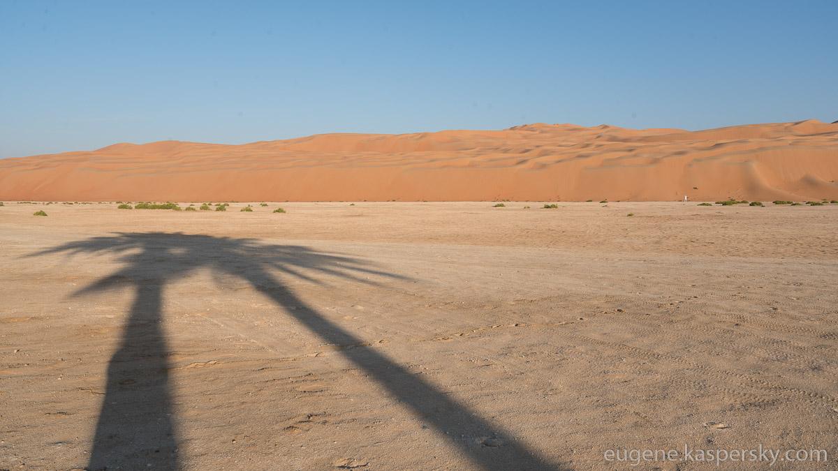 desert-stroll-23