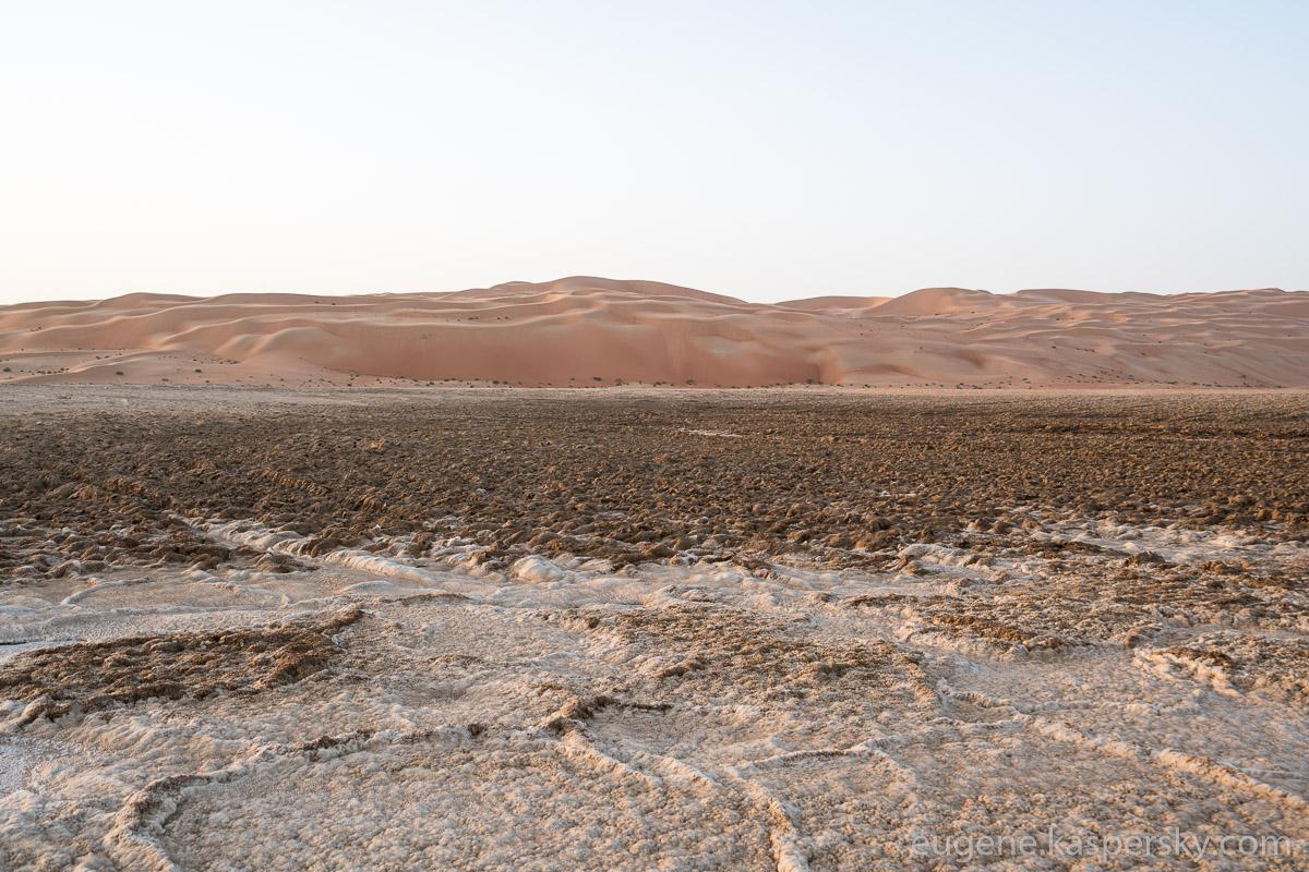 desert-cars-25