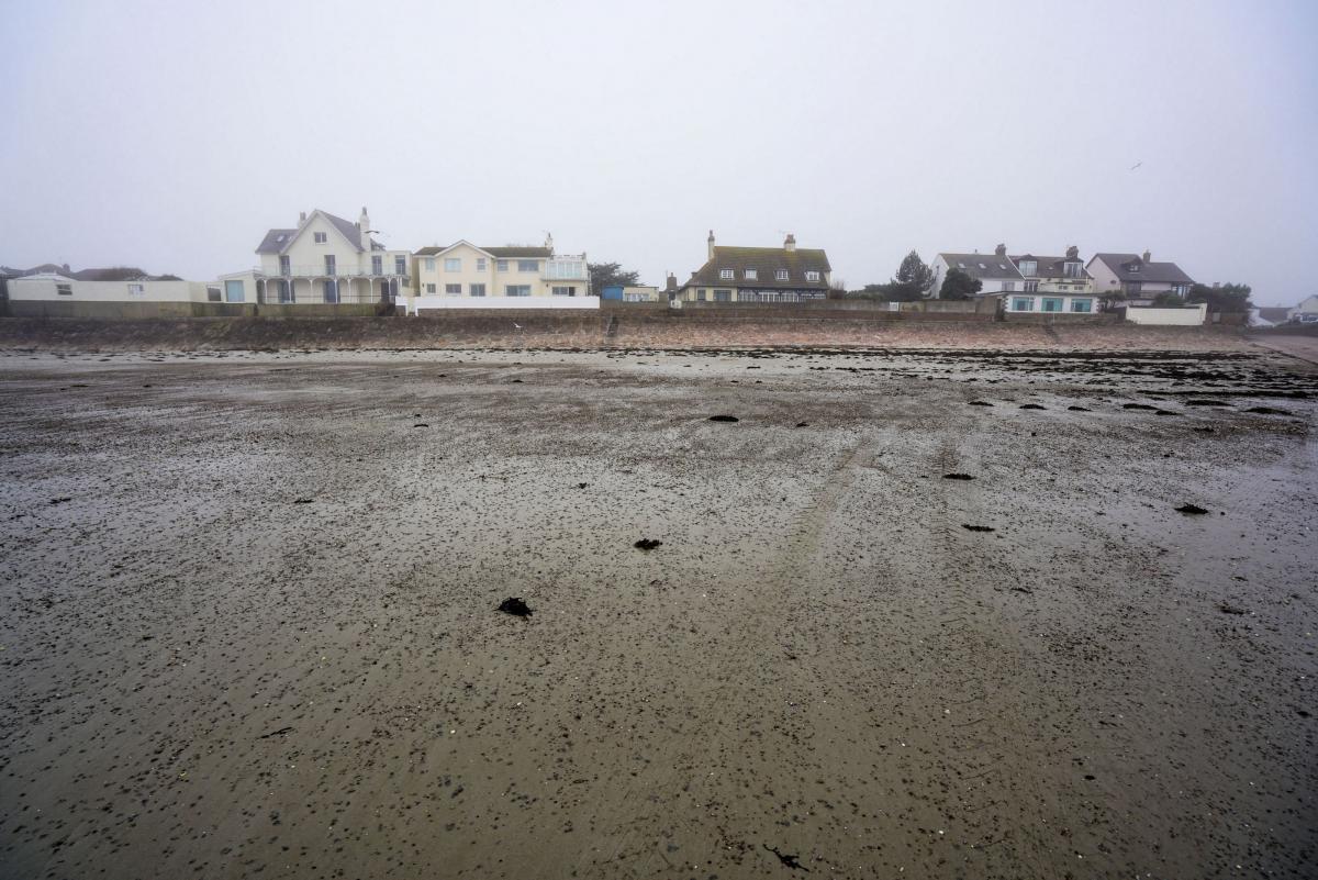 jersey-uk-oyster-farm-4