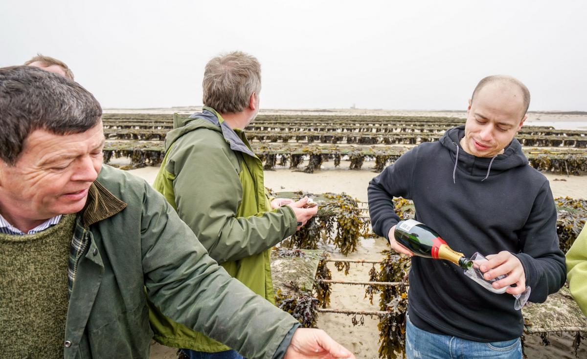jersey-uk-oyster-farm-16