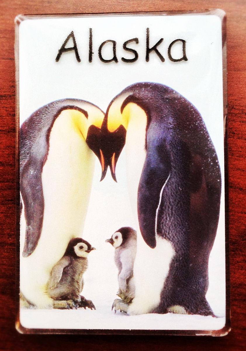 argentina-ushuaia-antarctica-27