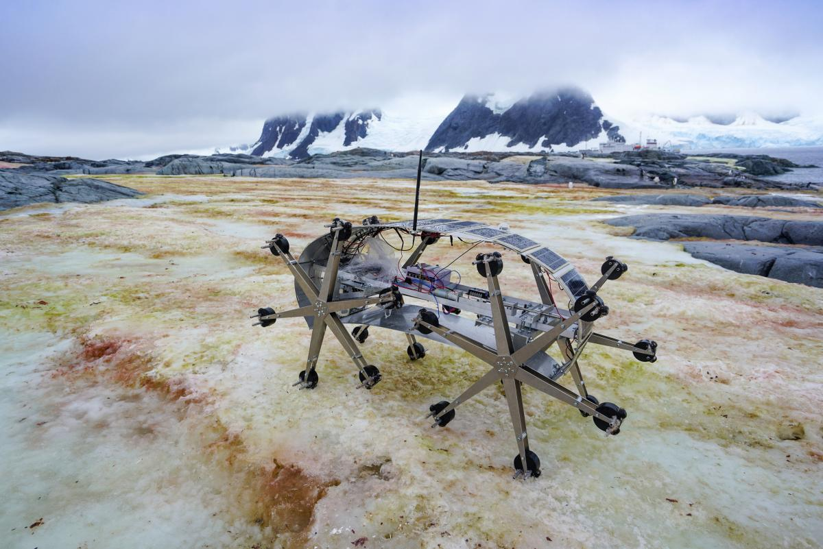 antarctic-biennale-contemporary-art-19