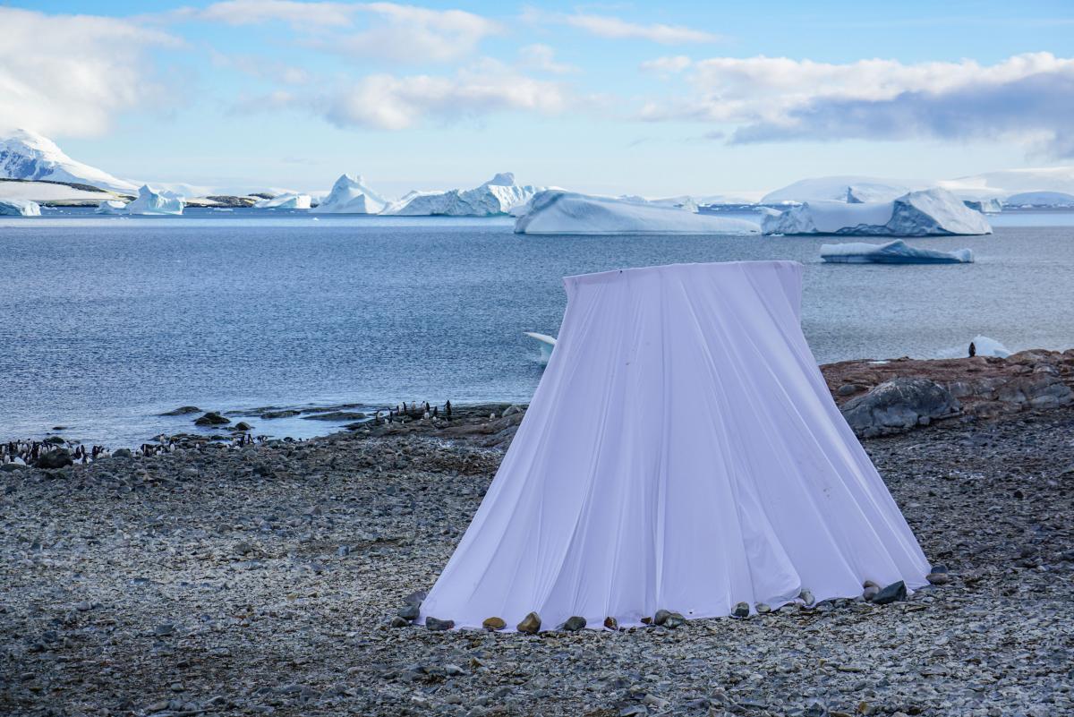 antarctic-biennale-contemporary-art-28