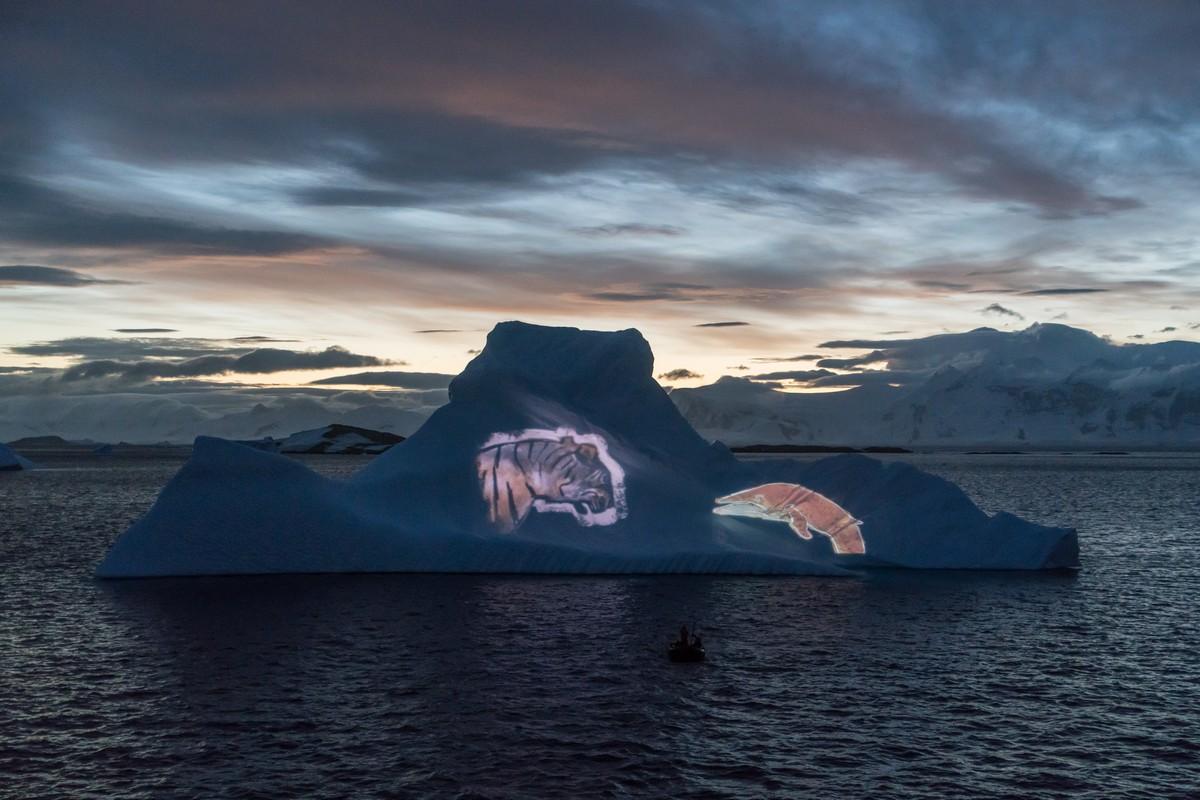 antarctic-biennale-contemporary-art-31