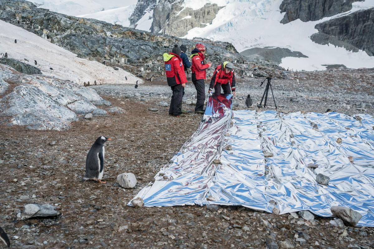 antarctic-biennale-contemporary-art-30
