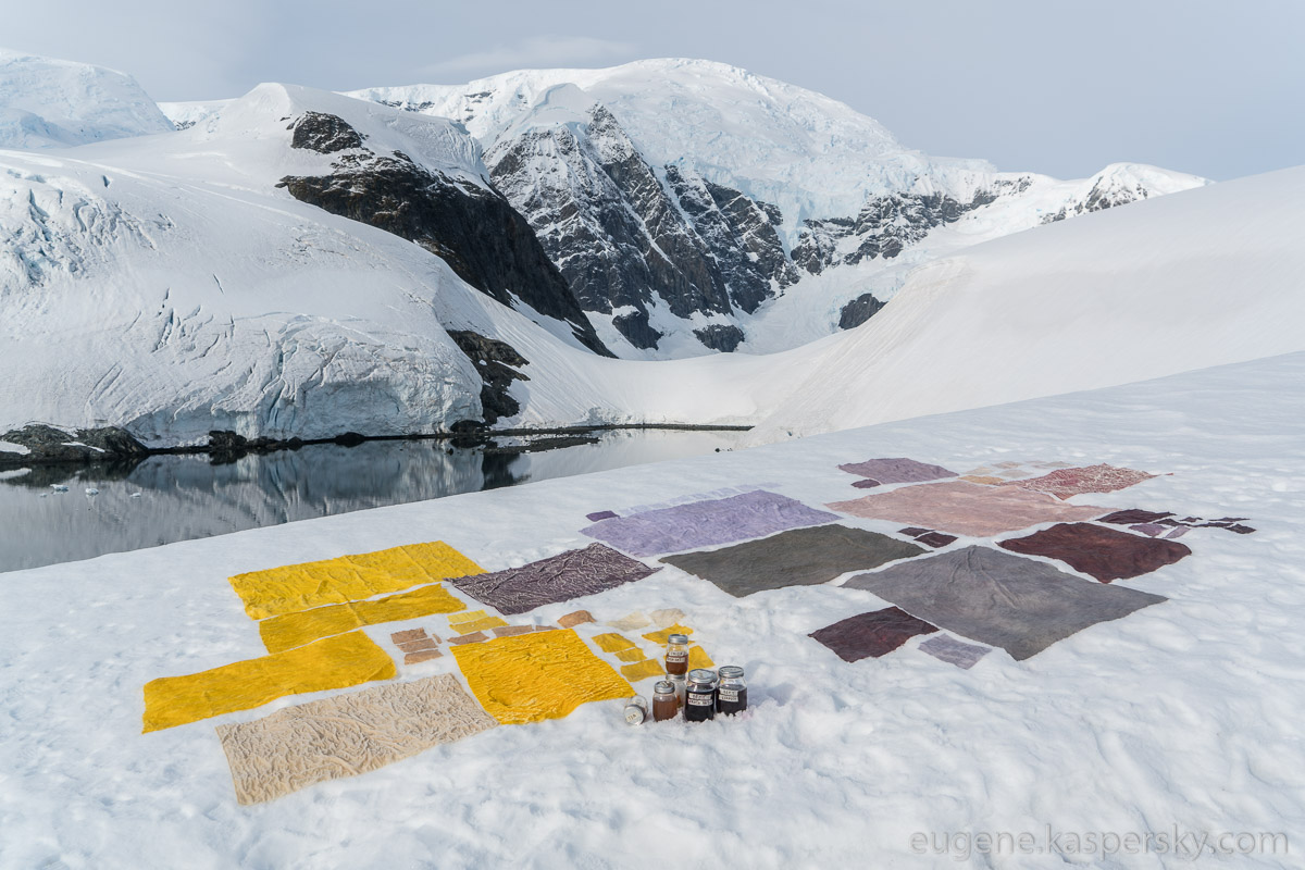 antarctic-biennale-contemporary-art-38