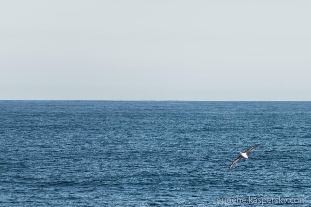 antarctica-drake-passage-17