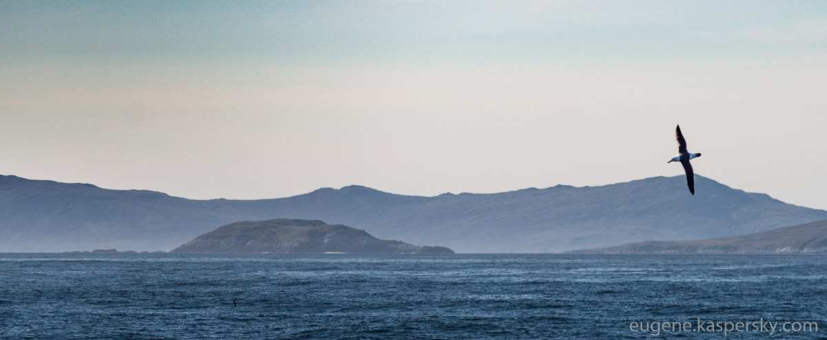 antarctica-drake-passage-18