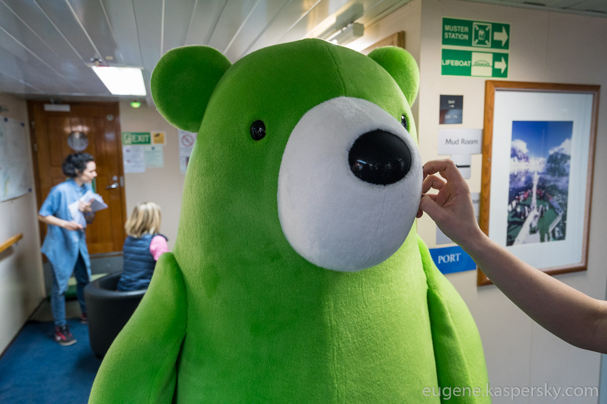 midori-kuma-green-bear-world-tour-5