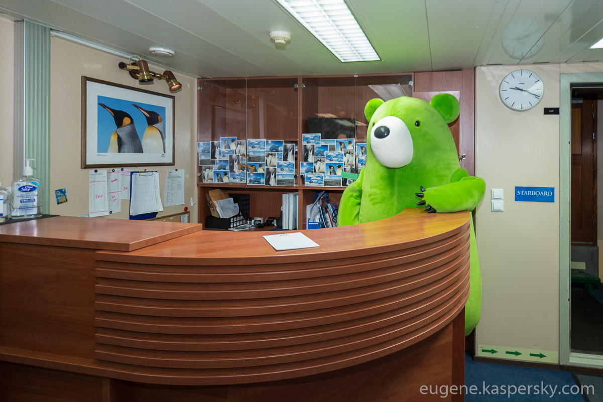 midori-kuma-green-bear-world-tour-24
