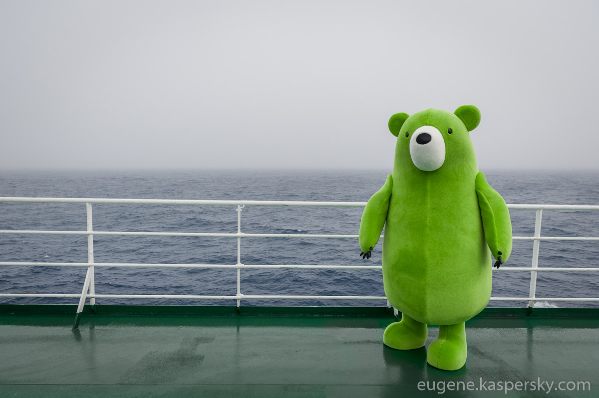 midori-kuma-green-bear-world-tour-30