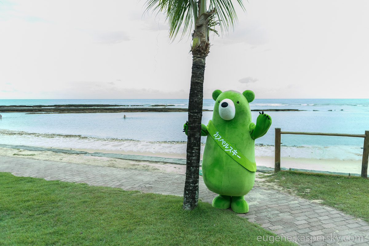 midori-kuma-green-bear-world-tour-43