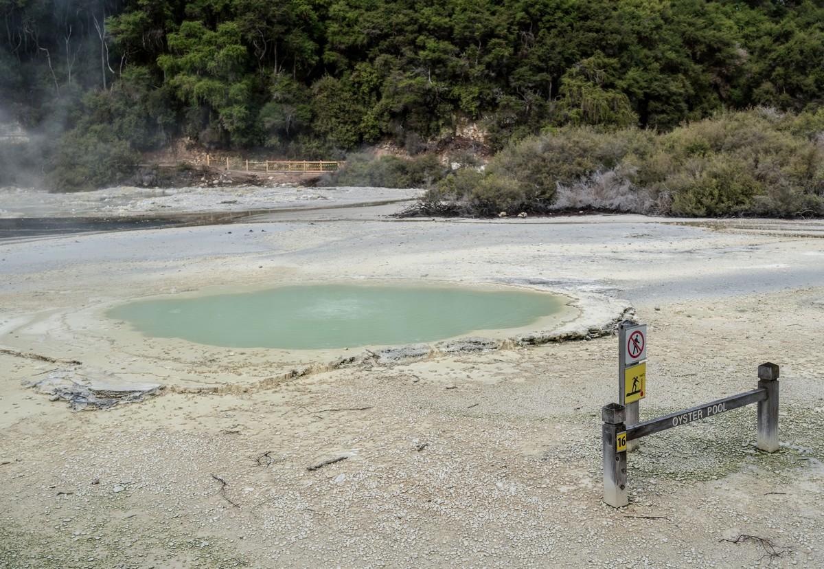 wai-o-tapu-new-zealand-volcanism-9