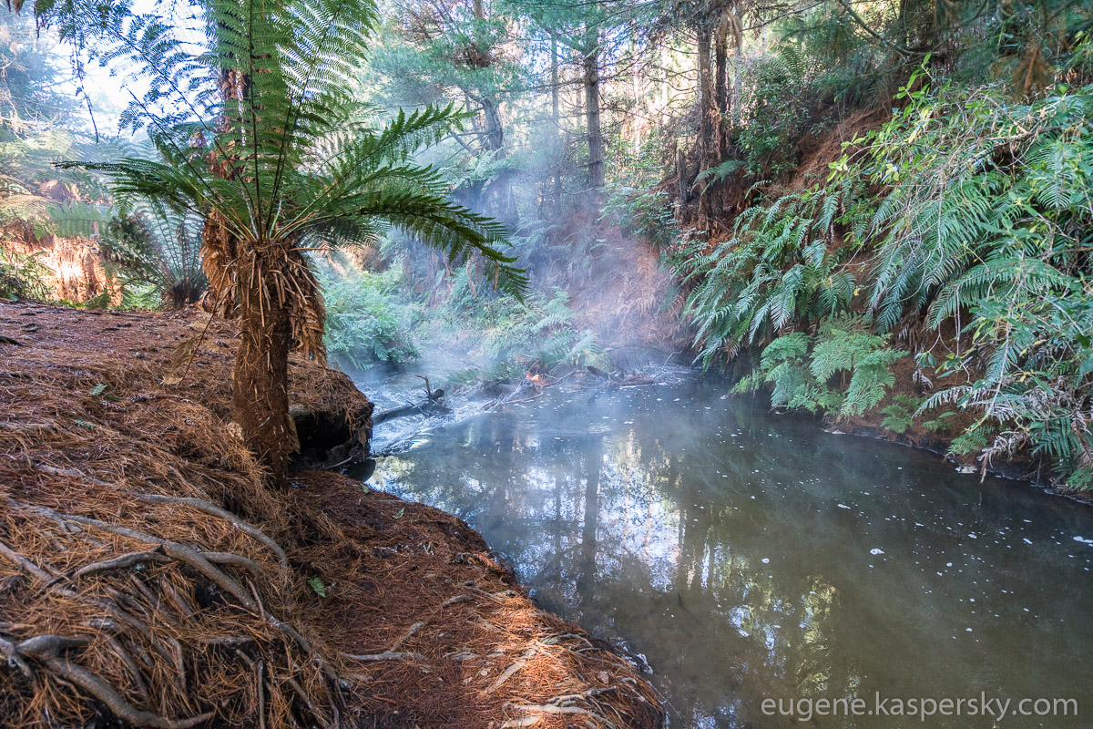 new-zealand-kerosene-creek-2