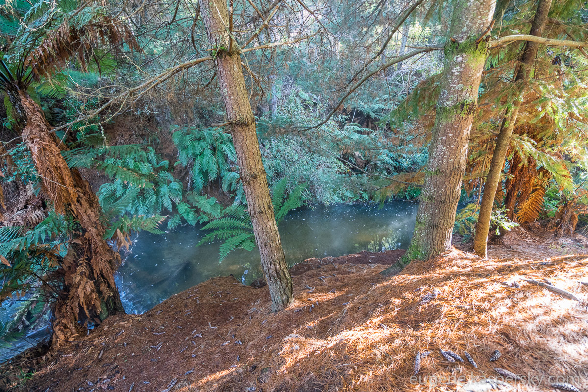 new-zealand-kerosene-creek-3