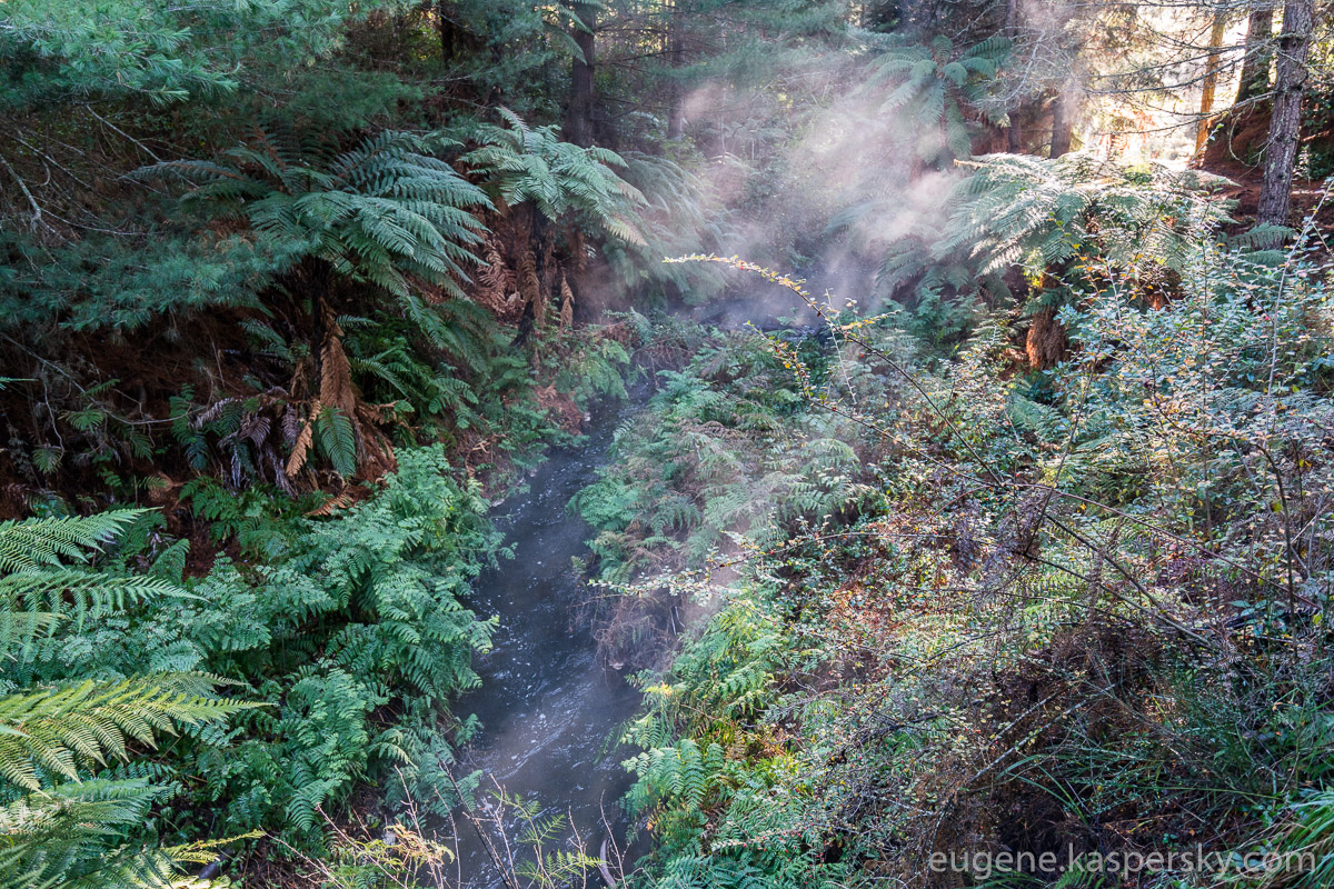 new-zealand-kerosene-creek-8